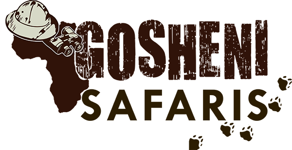 Gosheni Safaris